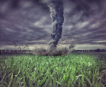 large tornado over the meadow (photo  elements compilation)